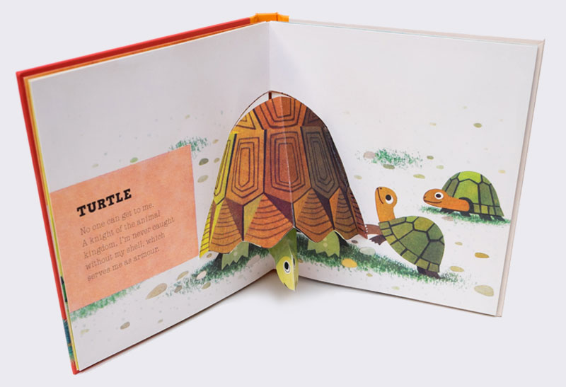 turtle_and_friends_3