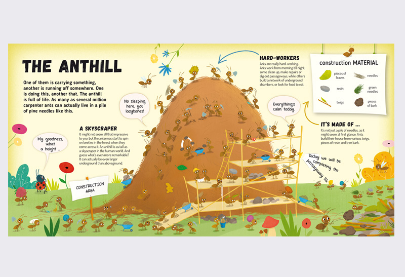Explore_Anthill_4