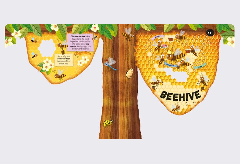 Explore_Beehive_3