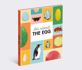 All about the Egg