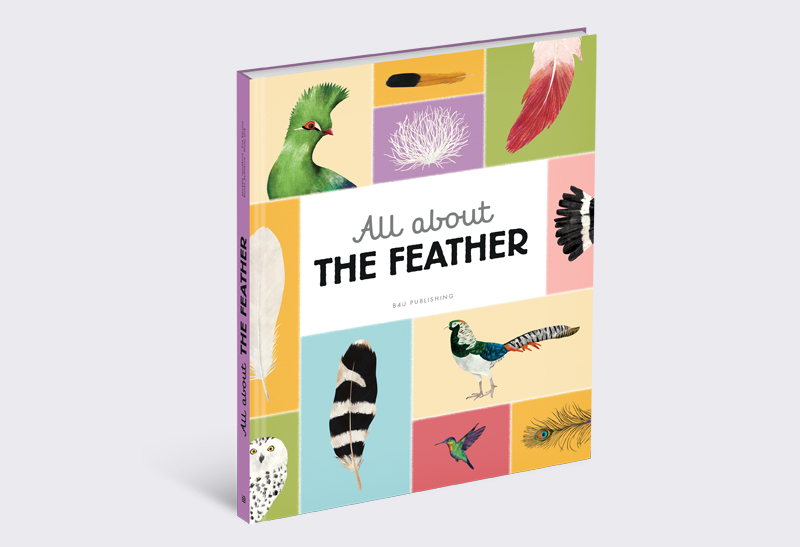 All_about_the_Feather_1