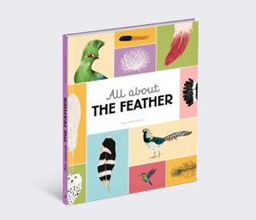 All about the Feather