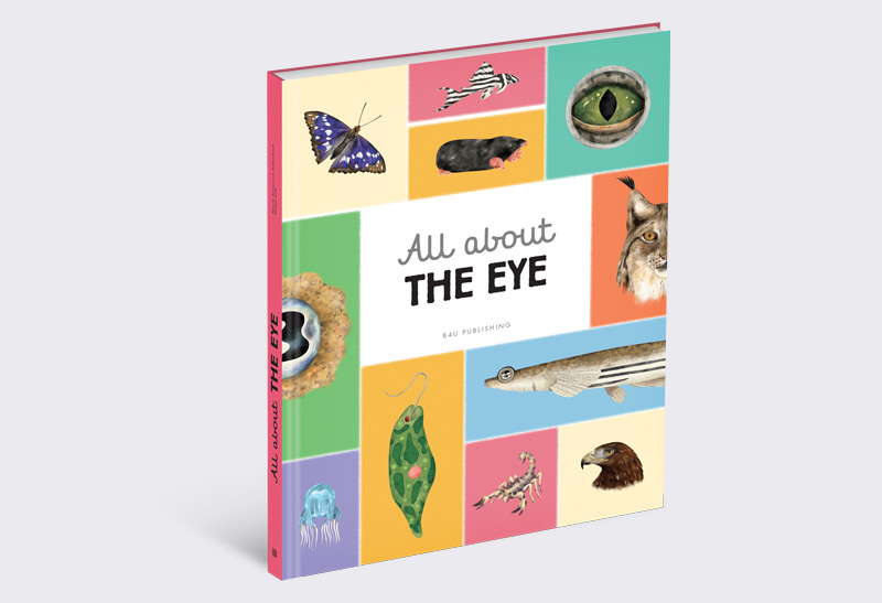 All_About_the_Eye_1