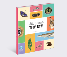 All about the Eye