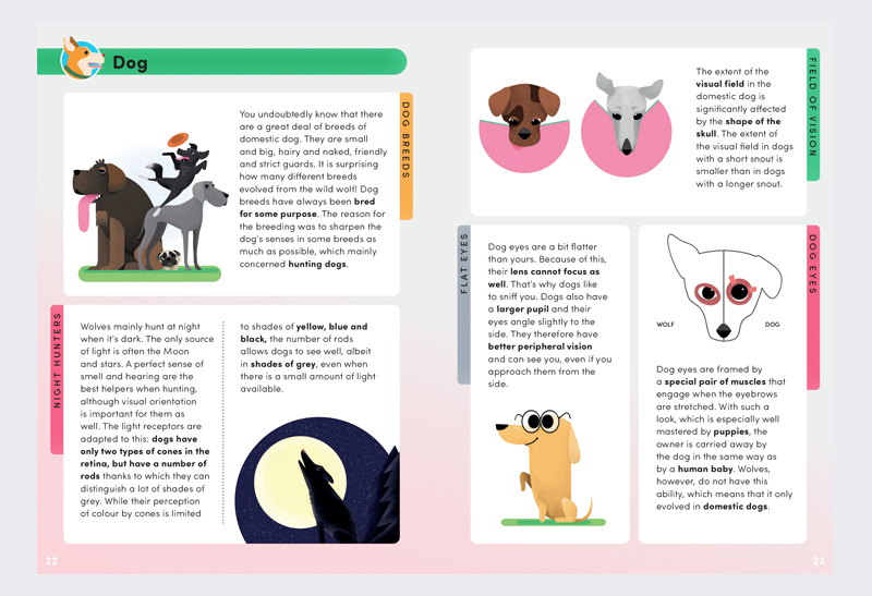 How_do_animals_see_3